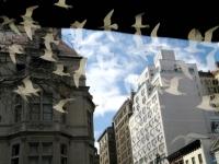 new_york_sky.jpg